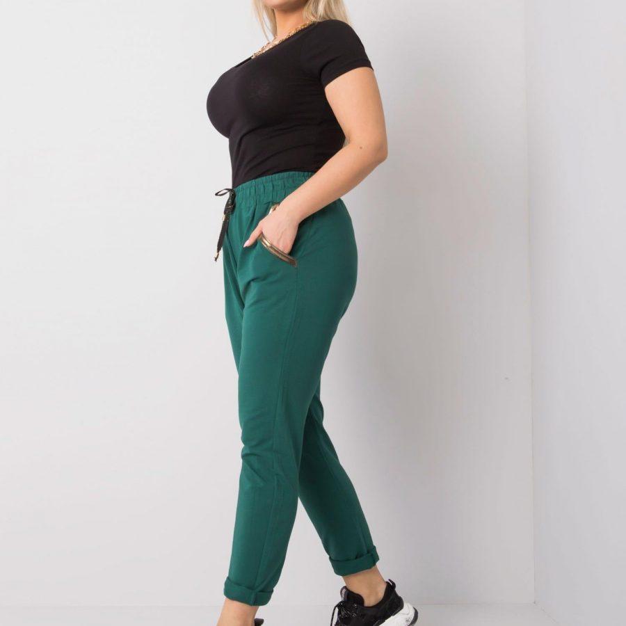 Spodnie dresowe-RV-DR-5544.37P-zielony