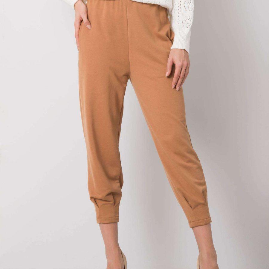 Spodnie dresowe-217-DR-25676.78P-brązowy